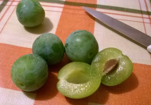 greengages4.jpg