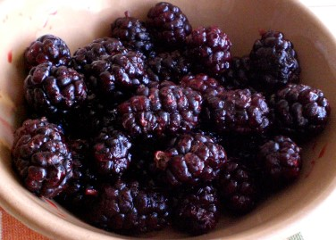 mulberries5.jpg